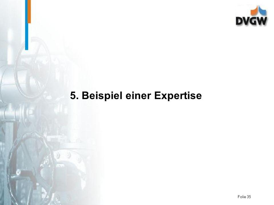 5. Beispiel einer Expertise
