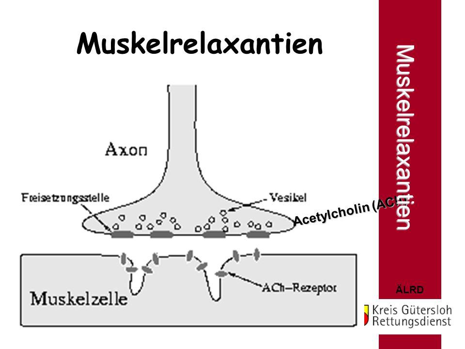 Muskelrelaxantien Muskelrelaxantien Acetylcholin (ACh)