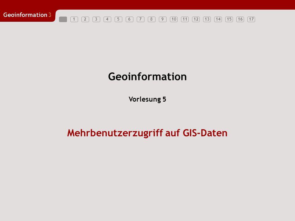 Mehrbenutzerzugriff auf GIS-Daten