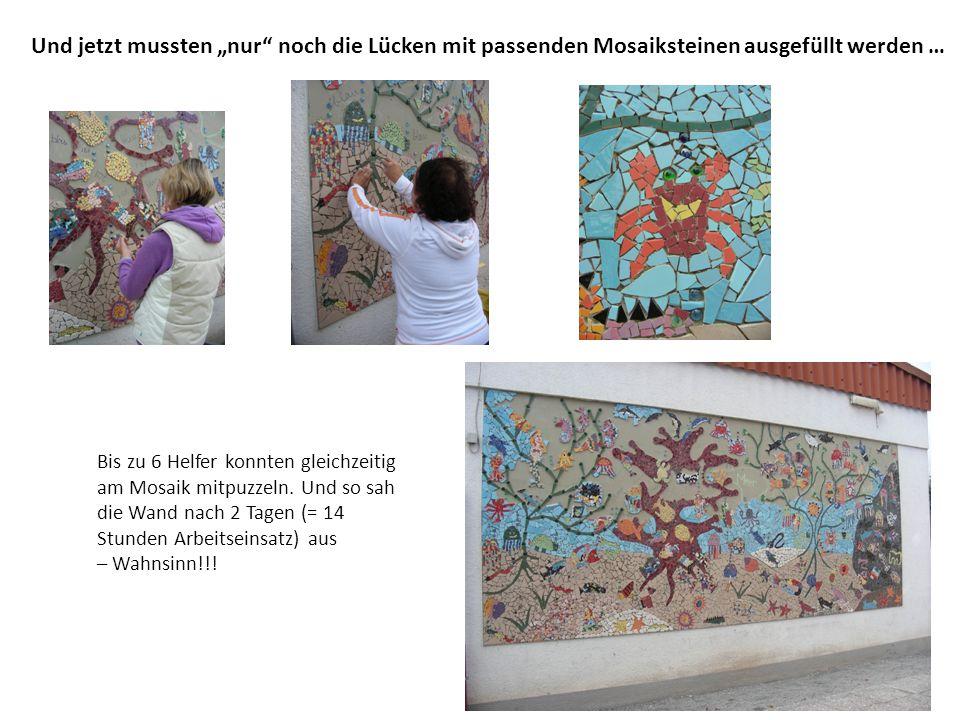 """Und jetzt mussten """"nur noch die Lücken mit passenden Mosaiksteinen ausgefüllt werden …"""