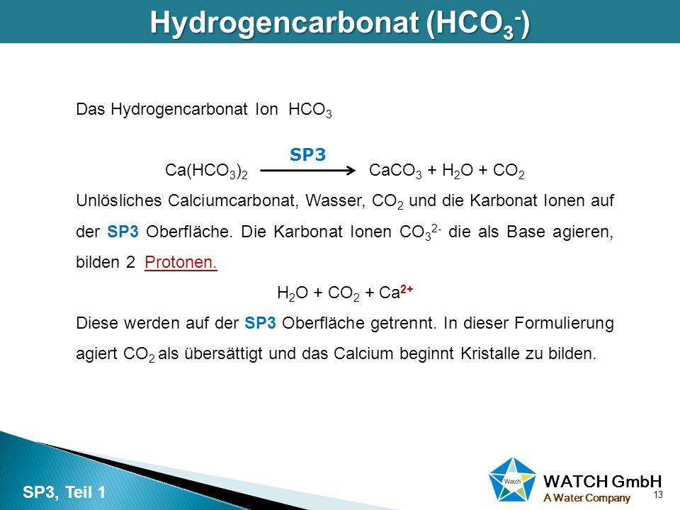 Hydrogencarbonat (HCO3-)