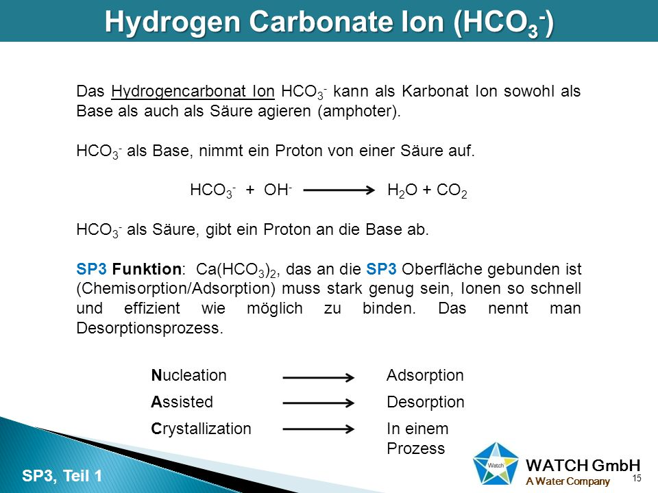 Hydrogen Carbonate Ion (HCO3-)