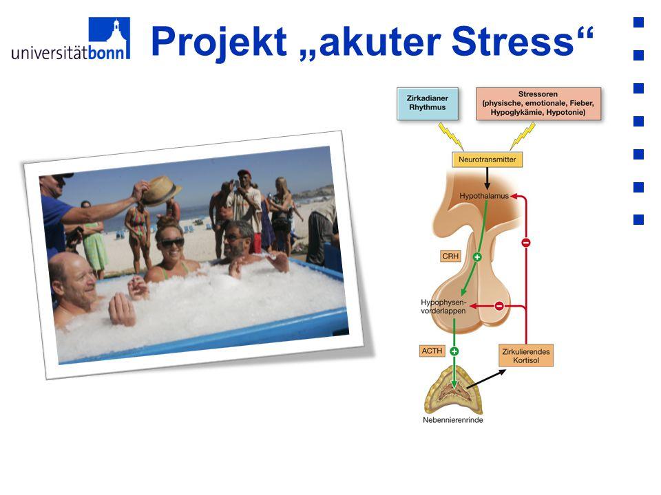 """Projekt """"akuter Stress"""