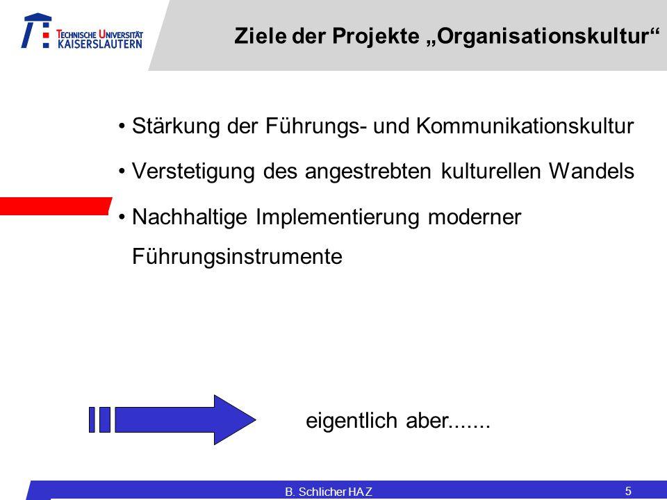 """Ziele der Projekte """"Organisationskultur"""