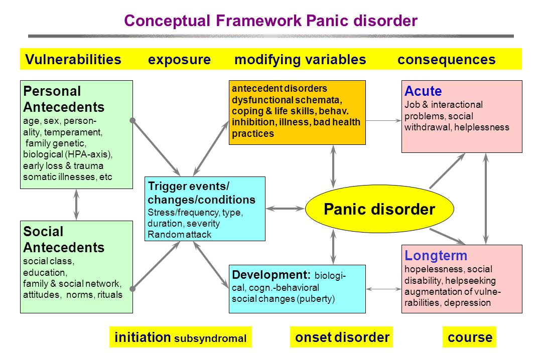 Conceptual Framework Panic disorder