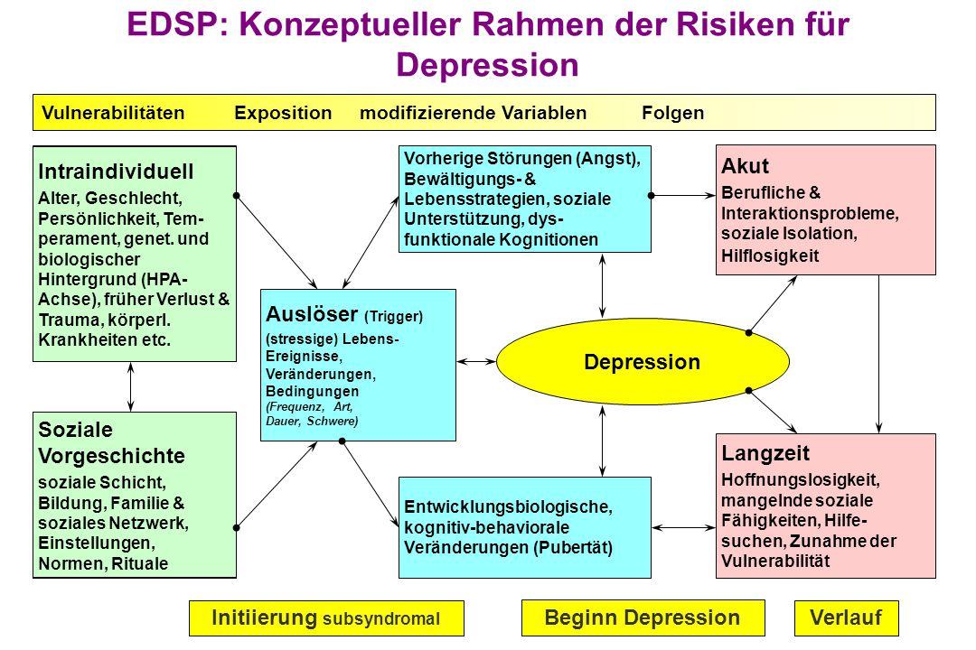 EDSP: Konzeptueller Rahmen der Risiken für Depression