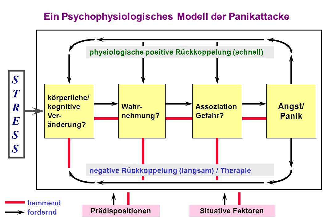 Ein Psychophysiologisches Modell der Panikattacke