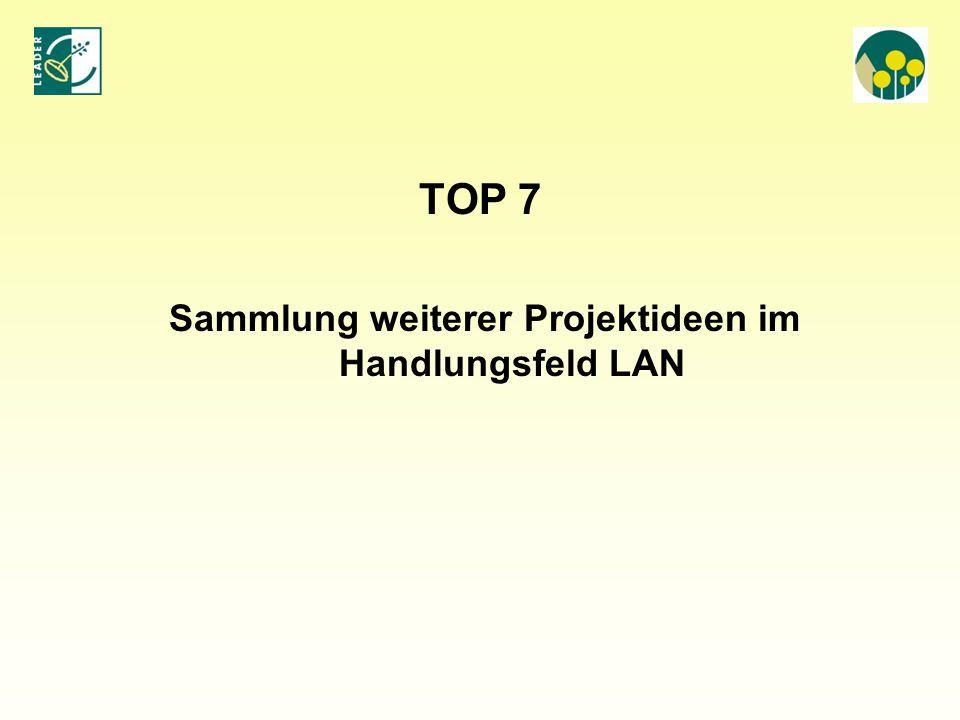 Sammlung weiterer Projektideen im Handlungsfeld LAN