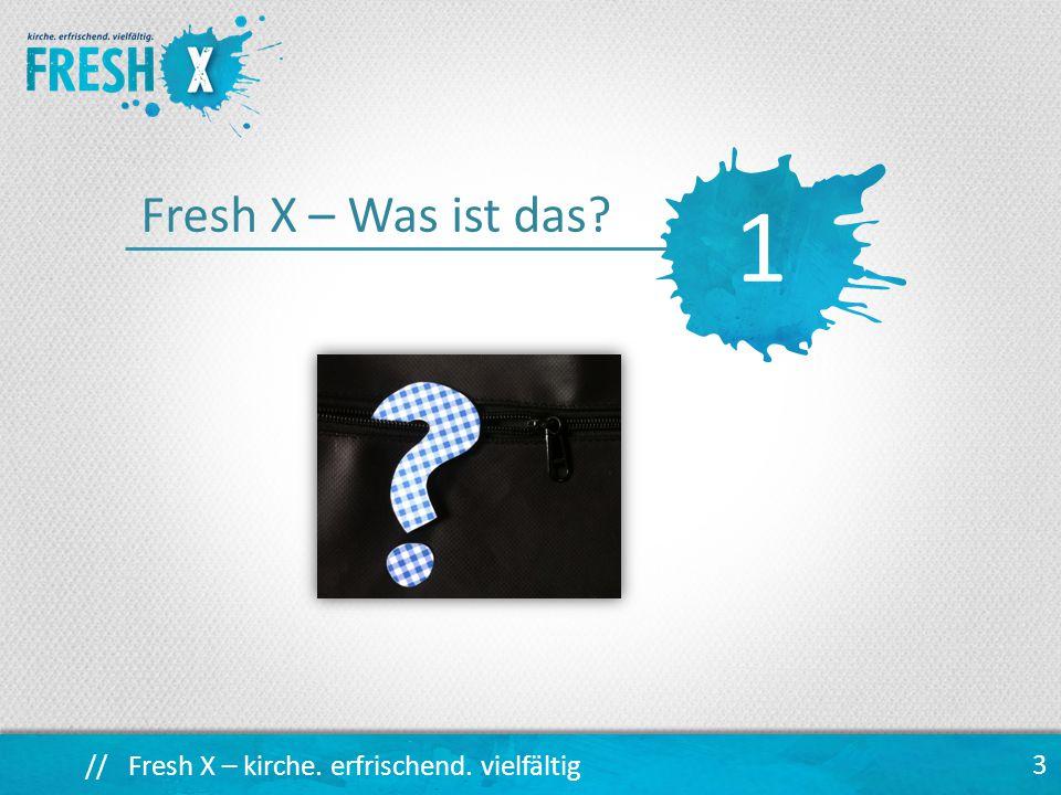 1 Fresh X – Was ist das
