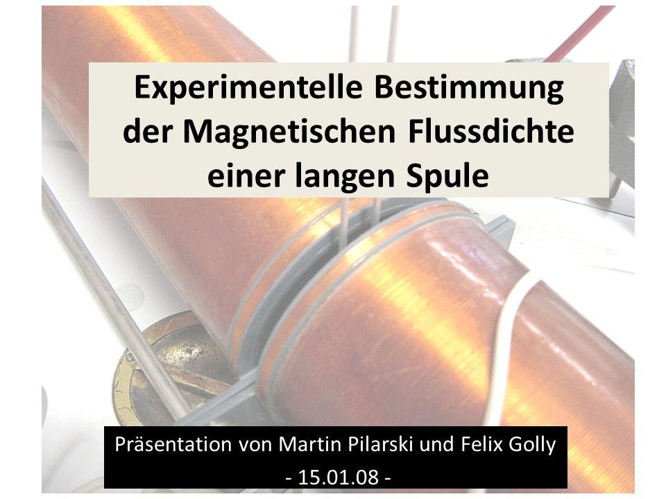 Präsentation von Martin Pilarski und Felix Golly - 15.01.08 -