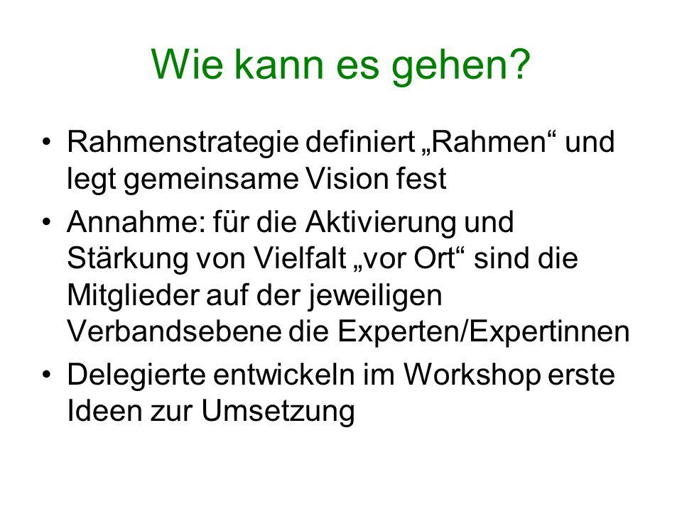 """Wie kann es gehen Rahmenstrategie definiert """"Rahmen und legt gemeinsame Vision fest."""