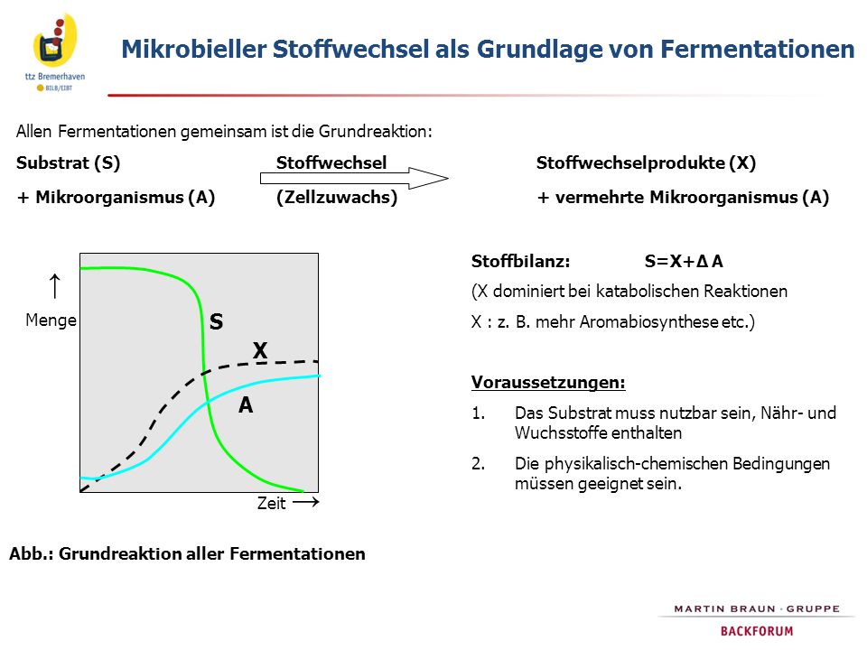 Abb.: Grundreaktion aller Fermentationen
