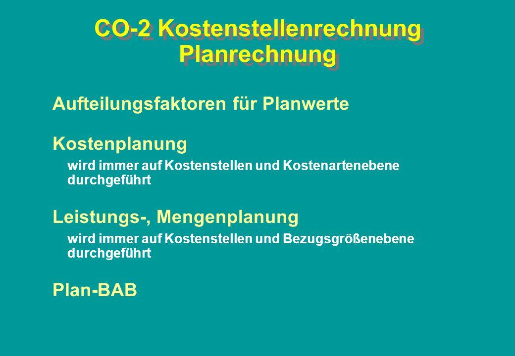 CO-2 Kostenstellenrechnung Planrechnung