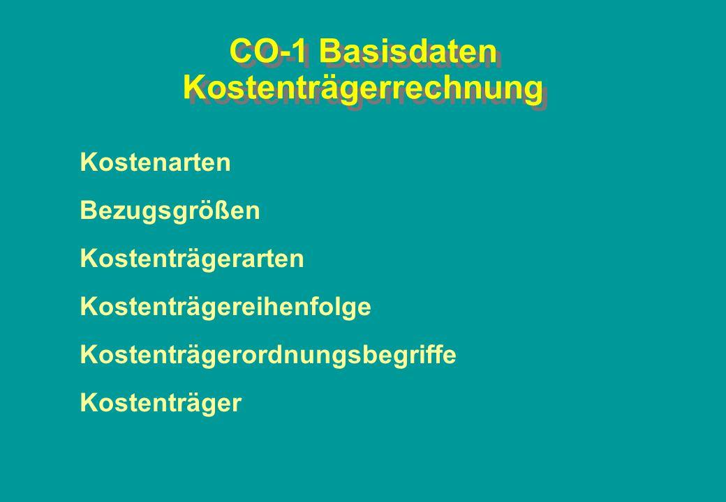 CO-1 Basisdaten Kostenträgerrechnung