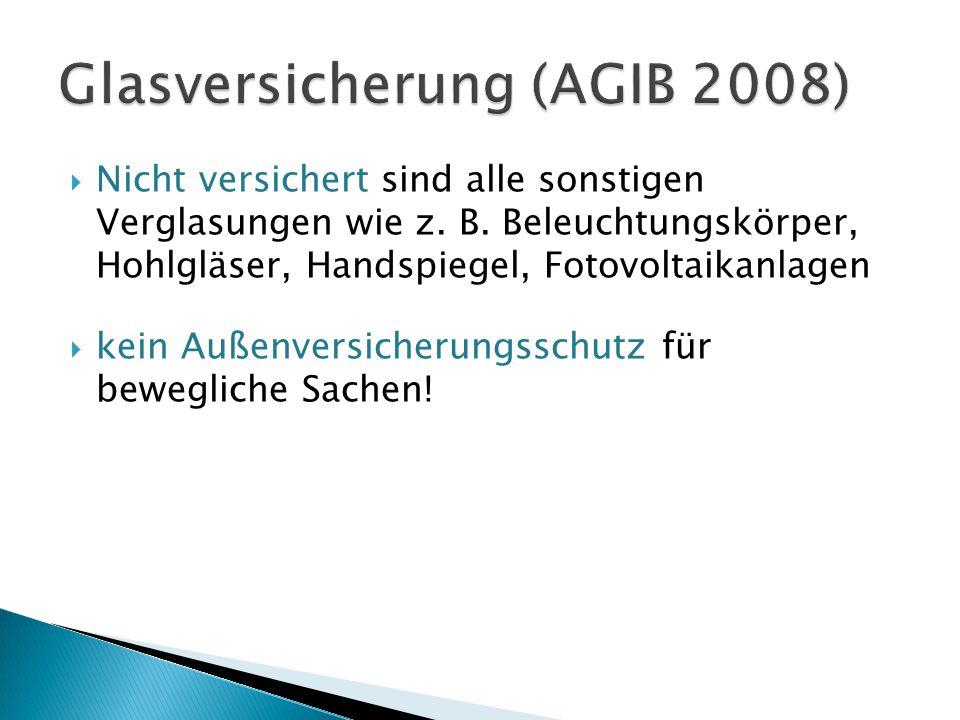 Glasversicherung (AGIB 2008)