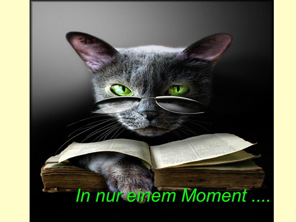 In nur einem Moment ....