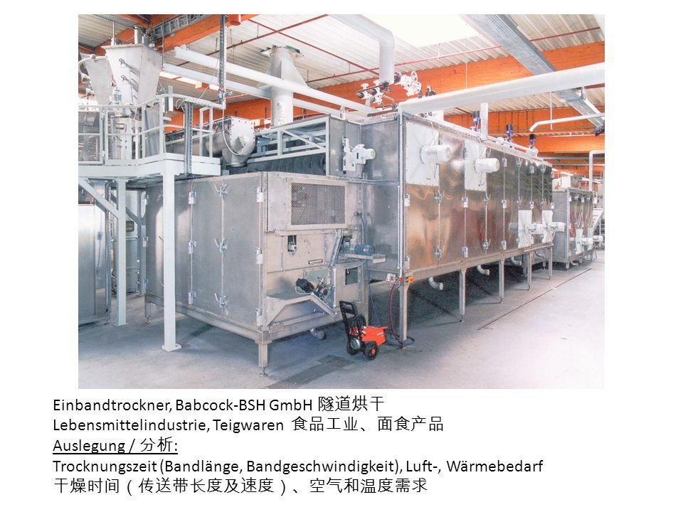 Einbandtrockner, Babcock-BSH GmbH 隧道烘干