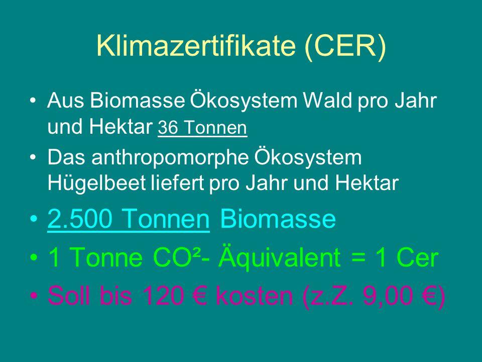 Klimazertifikate (CER)