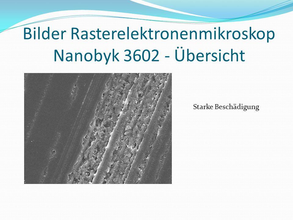 Bilder Rasterelektronenmikroskop Nanobyk 3602 - Übersicht