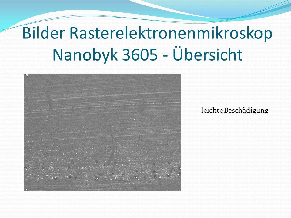 Bilder Rasterelektronenmikroskop Nanobyk 3605 - Übersicht