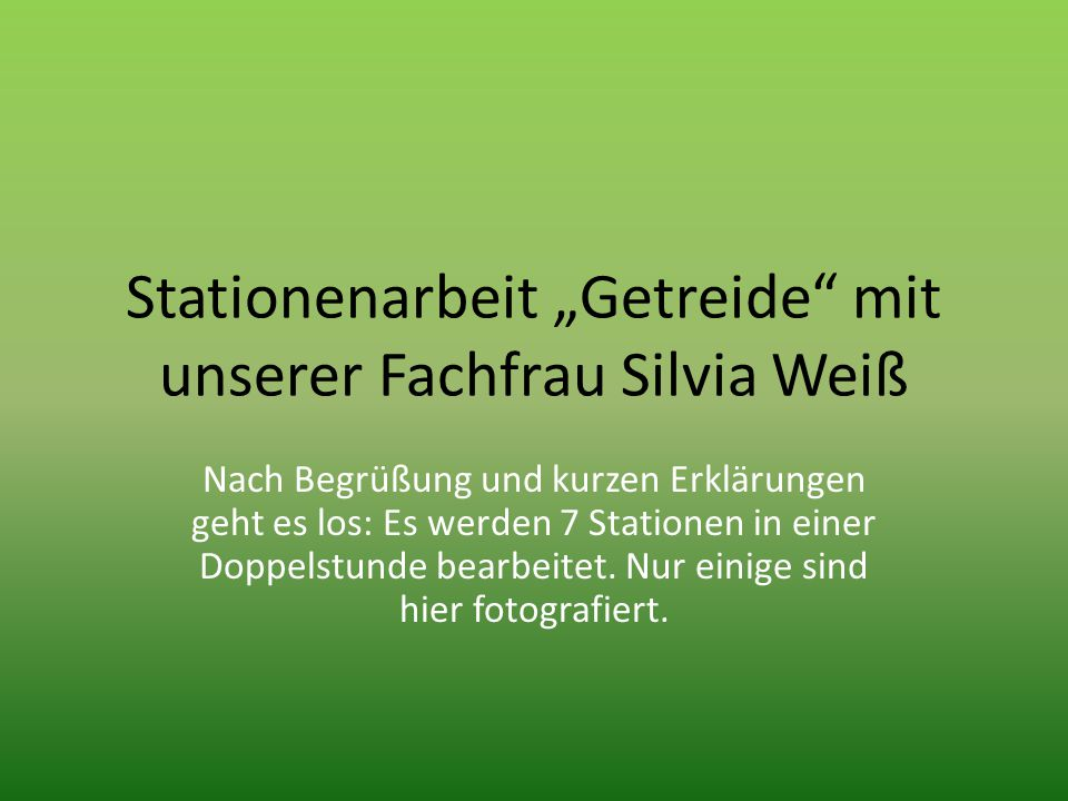 """Stationenarbeit """"Getreide mit unserer Fachfrau Silvia Weiß"""