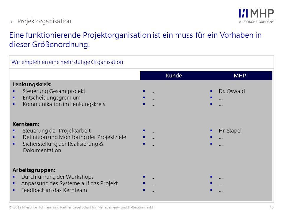 5 Projektorganisation Eine funktionierende Projektorganisation ist ein muss für ein Vorhaben in dieser Größenordnung.