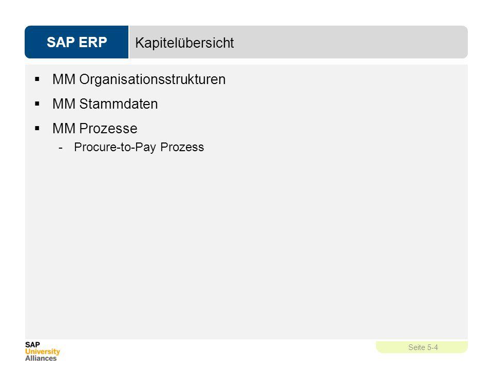 MM Organisationsstrukturen MM Stammdaten MM Prozesse