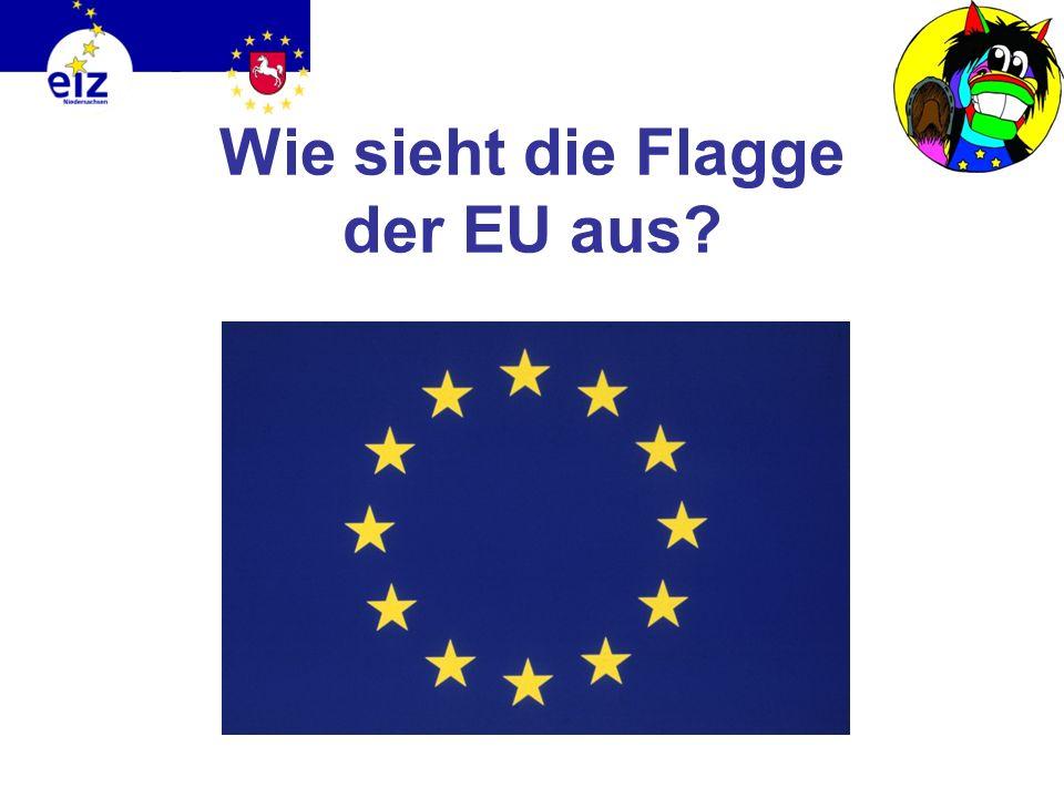 Wie sieht die Flagge der EU aus