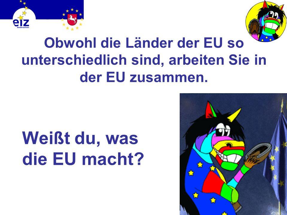 Weißt du, was die EU macht