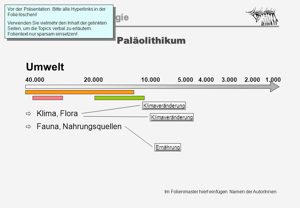 Umwelt Paläolithikum Klima, Flora Fauna, Nahrungsquellen 40.000 20.000