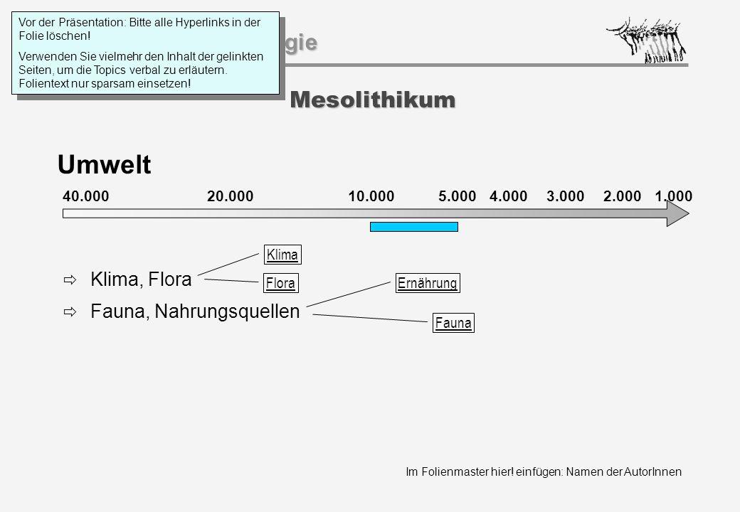 Umwelt Mesolithikum Klima, Flora Fauna, Nahrungsquellen 40.000 20.000