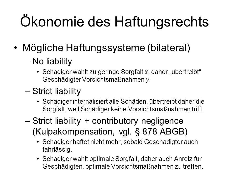 Ökonomie des Haftungsrechts