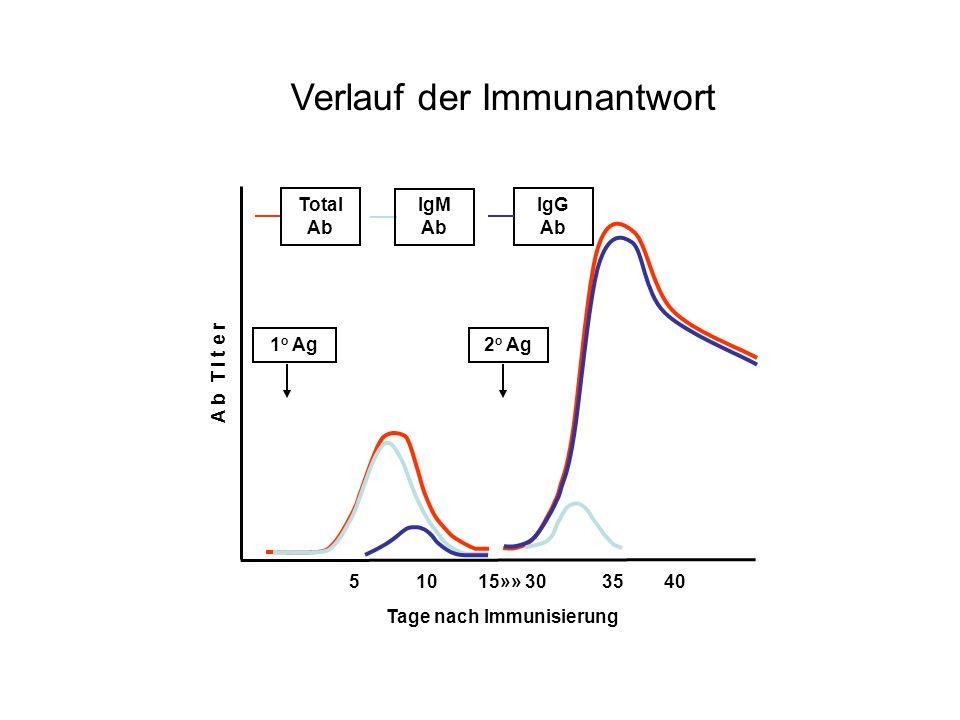 Tage nach Immunisierung