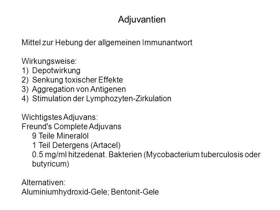 Adjuvantien Mittel zur Hebung der allgemeinen Immunantwort
