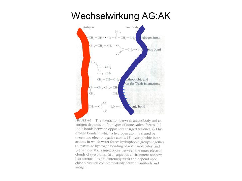 Wechselwirkung AG:AK