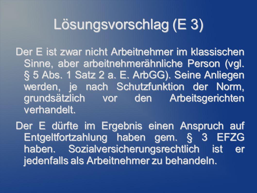 Lösungsvorschlag (E 3)