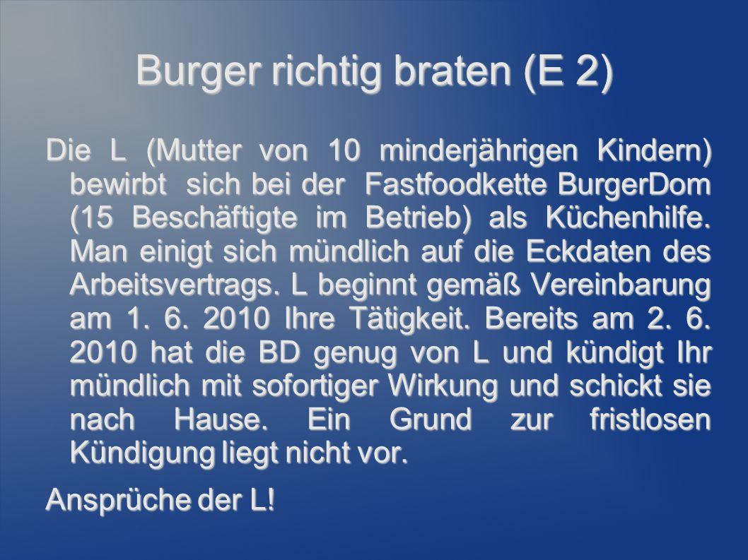 Burger richtig braten (E 2)