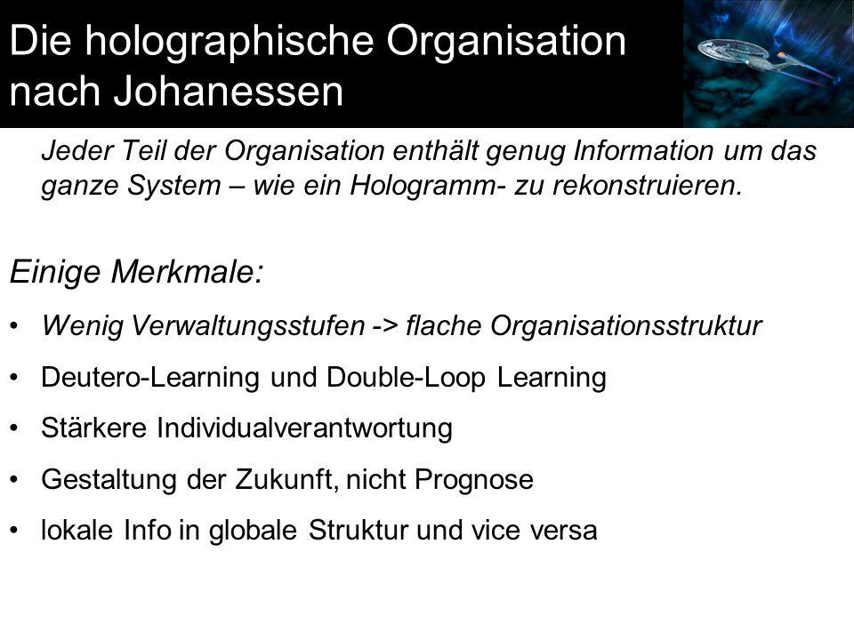 Die holographische Organisation nach Johanessen
