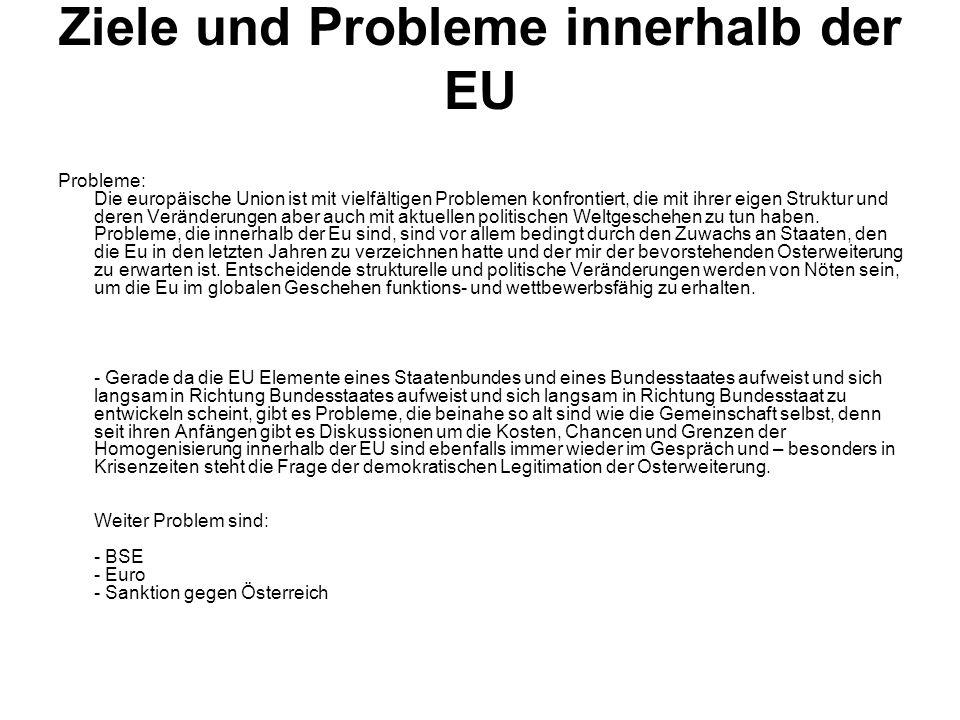 Ziele und Probleme innerhalb der EU
