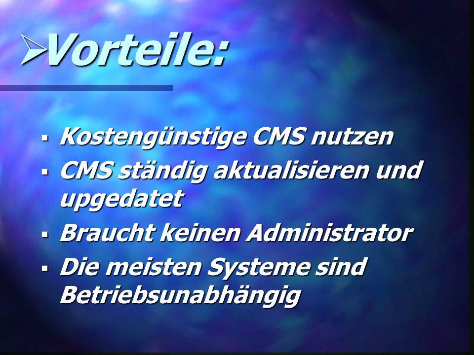 Vorteile: Kostengünstige CMS nutzen