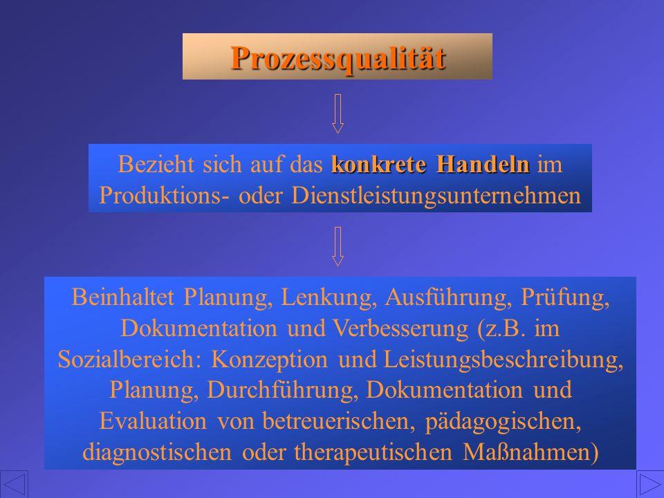 Prozessqualität Bezieht sich auf das konkrete Handeln im Produktions- oder Dienstleistungsunternehmen.