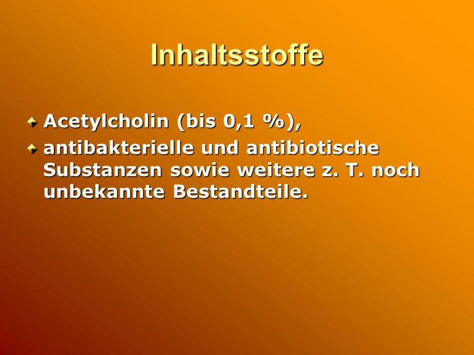 Inhaltsstoffe Acetylcholin (bis 0,1 %),