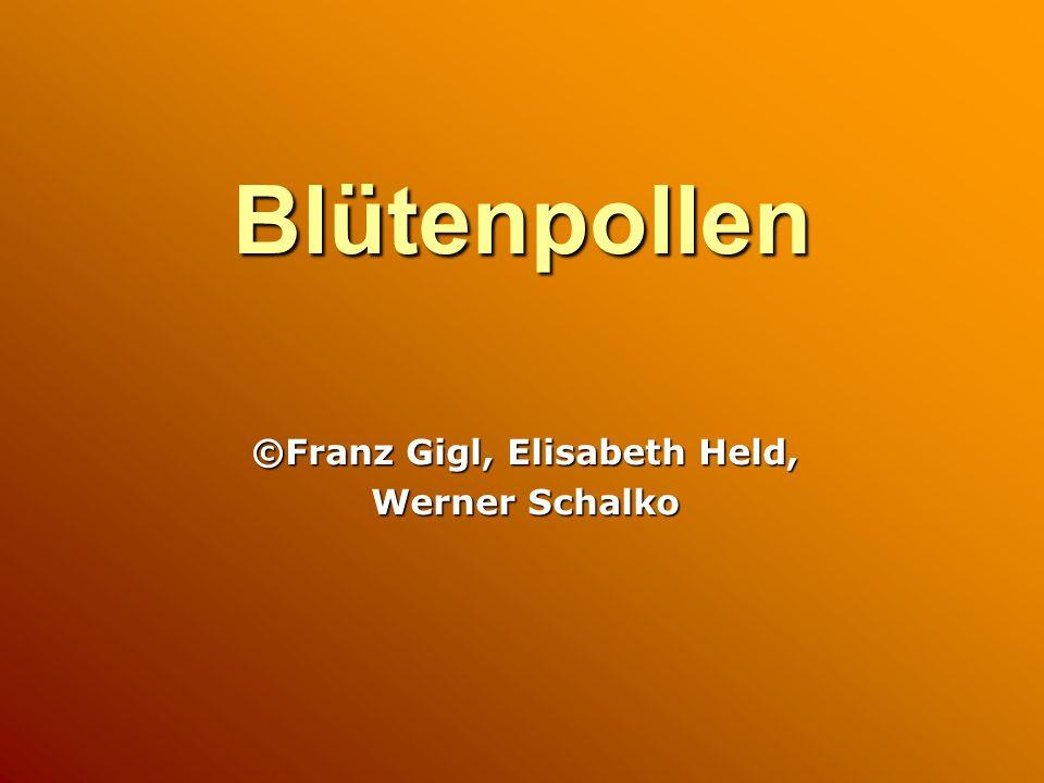 ©Franz Gigl, Elisabeth Held, Werner Schalko