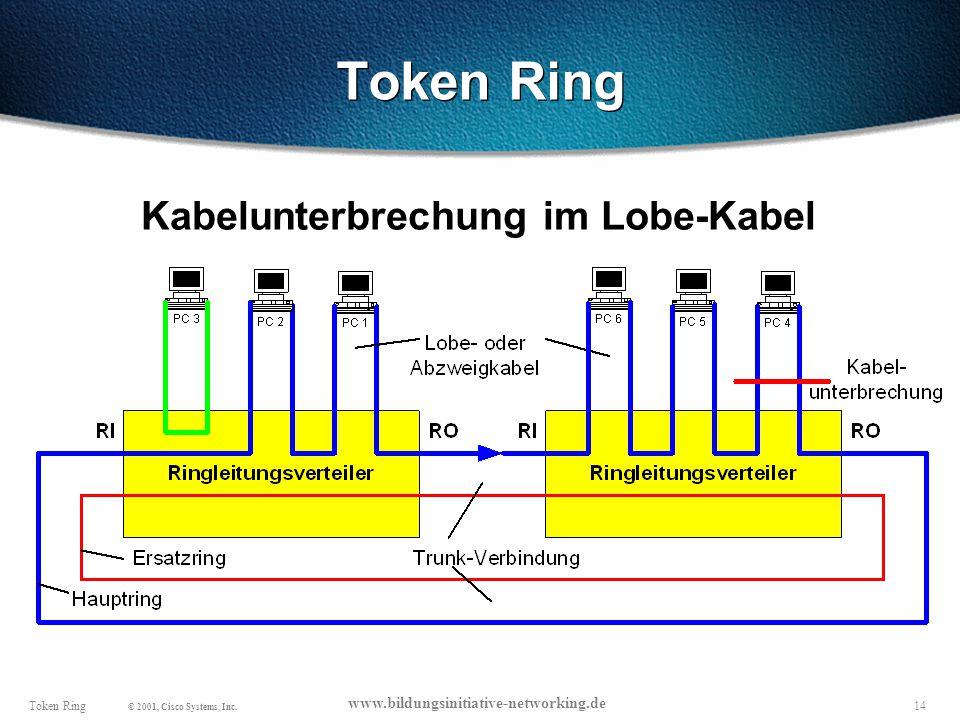 Token Ring Kabelunterbrechung im Lobe-Kabel
