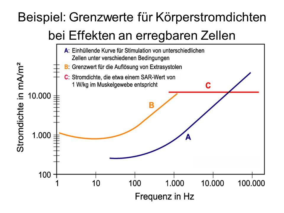 Beispiel: Grenzwerte für Körperstromdichten bei Effekten an erregbaren Zellen