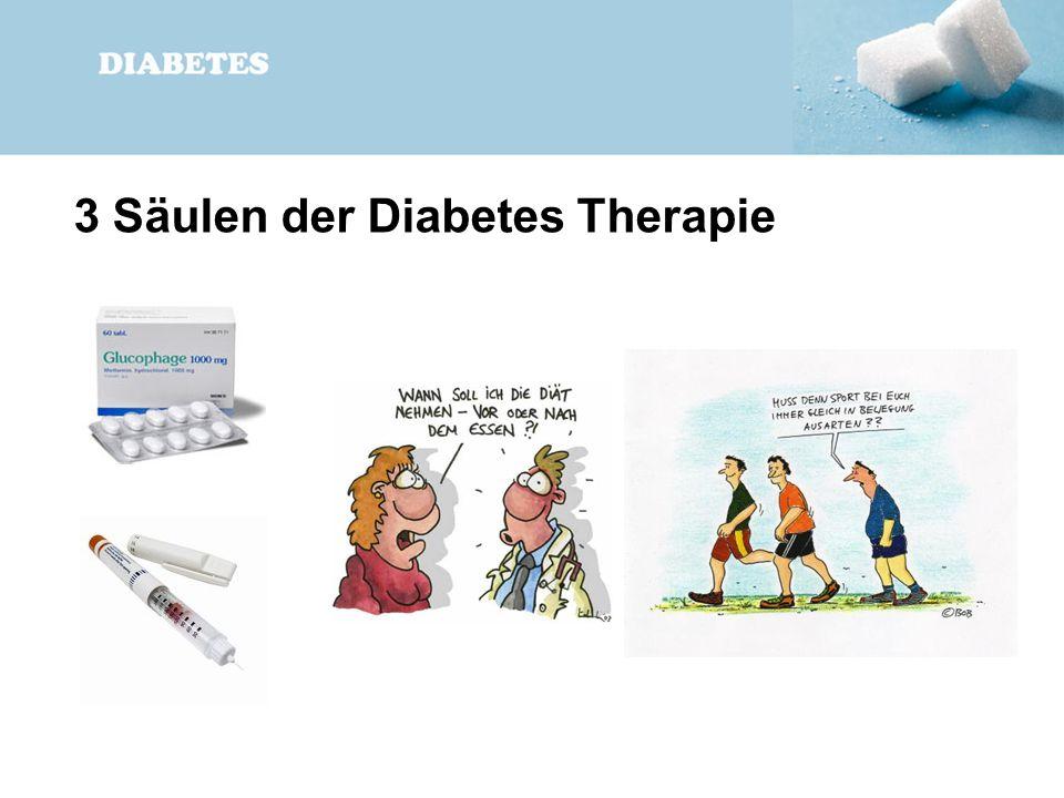 3 Säulen der Diabetes Therapie
