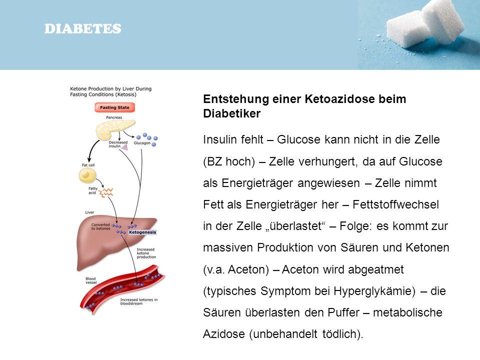 Entstehung einer Ketoazidose beim Diabetiker