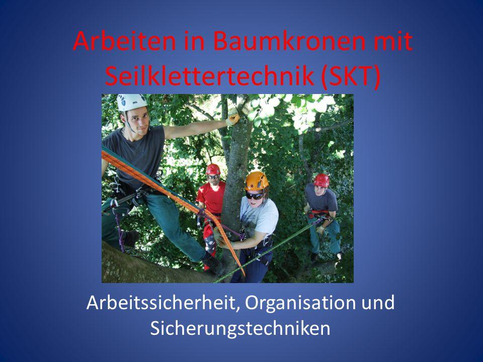 Arbeiten in Baumkronen mit Seilklettertechnik (SKT)