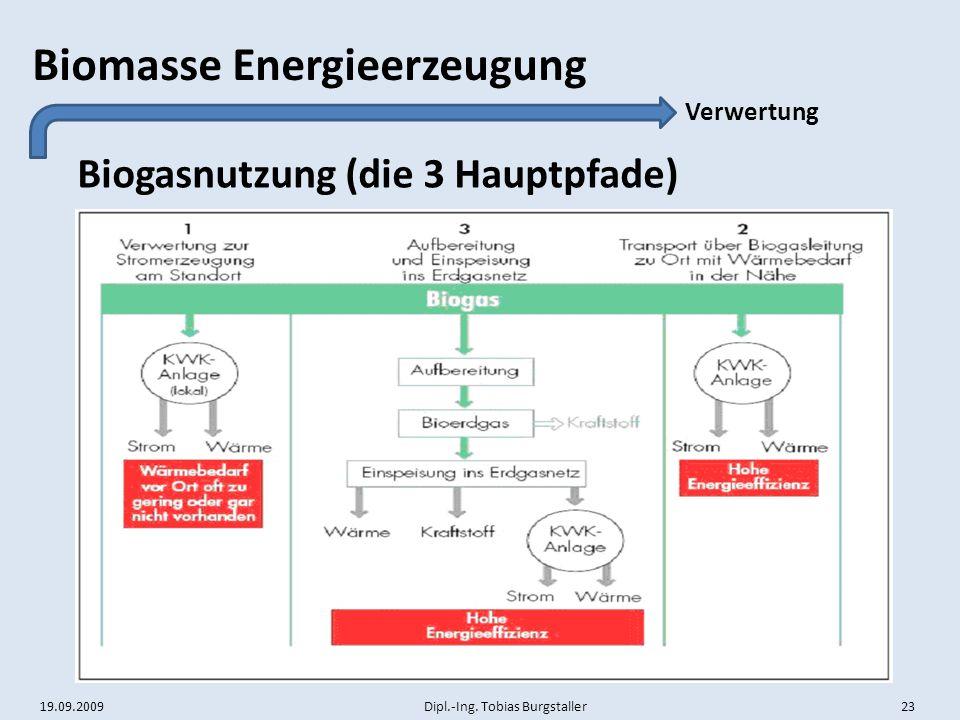 Biogasnutzung (die 3 Hauptpfade)