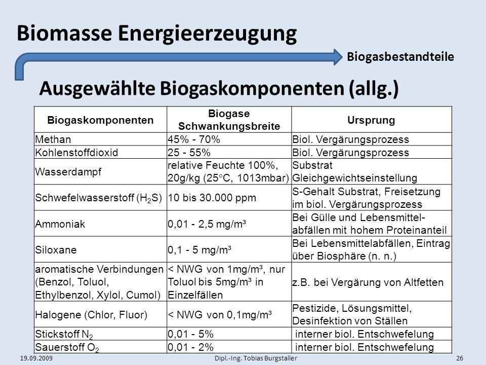 Biogase Schwankungsbreite